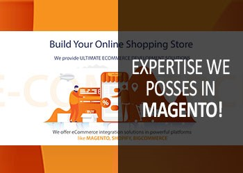 Expertise We Posses in Magento